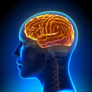 Brains are more healthy with neurofeedback