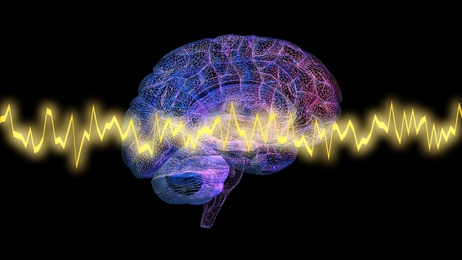 A Few Fun Facts about Neurofeedback Therapy